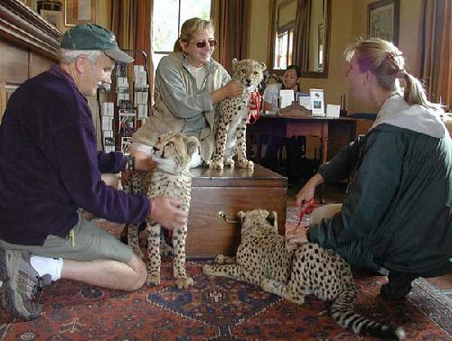 Cheetah Outreach cheetah education