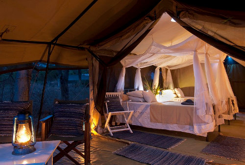 Offbeat Meru Camp