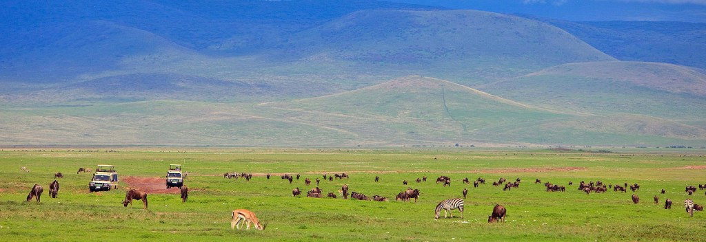 Tanzania Express safari Ngorongoro Crater game viewing