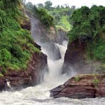safaris visiting Uganda Murchison Falls