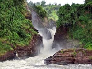 Uganda Discovery Safari