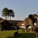 mweya_safari_lodge_panorama