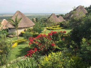 Parkview Safari Lodge view